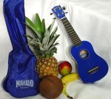 martin smith ukulele